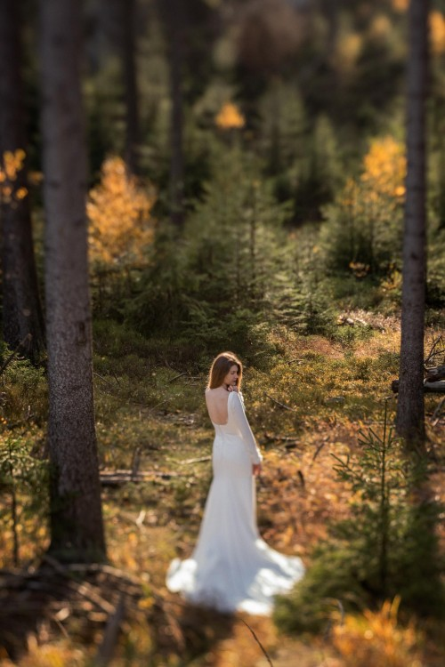 Suknia ślubna ALANA DRESS marki PRONOVIAS
