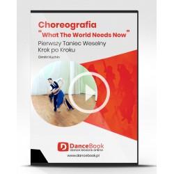 """Choreografia Pierwszego Tanca """"What The World Needs Now"""""""