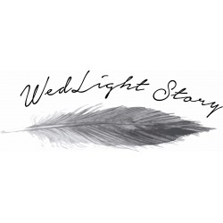 WedLight Story
