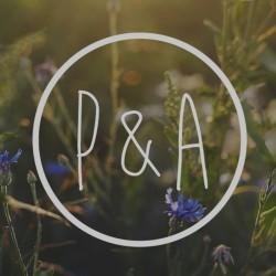 P&A Studio