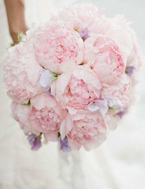 Urocze Piwonie W Bukiecie ślubnym Kwiaty Do ślubu W Maju